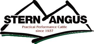 Stern Angus Logo