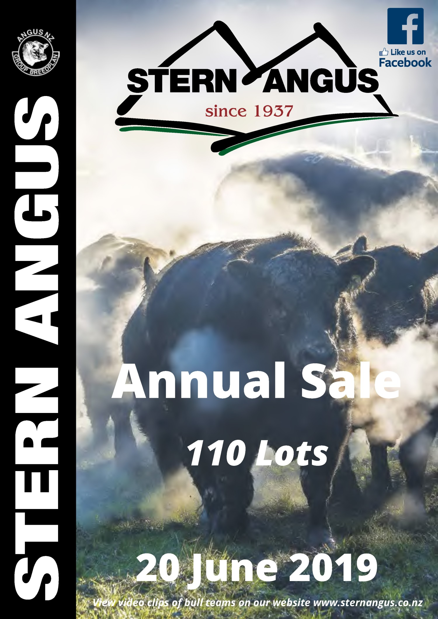 Stern Angus Annual Sale June 2019